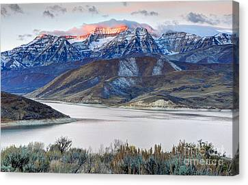Mt. Timpanogos Winter Sunrise Canvas Print by Gary Whitton