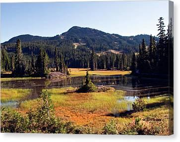 Mt Washington Autumn Canvas Print
