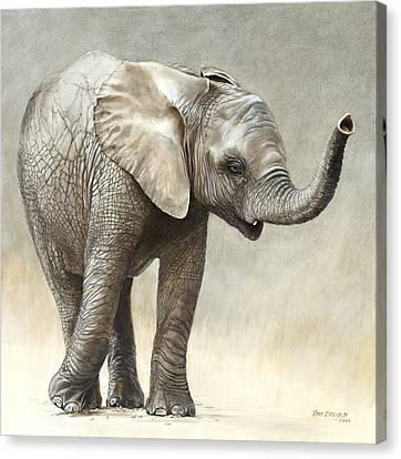 Mtoto Tembo Canvas Print