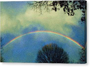 Much Needed Hope Canvas Print by Denise Beverly