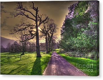 Muckross Park Kerry Ireland Canvas Print by Jo Collins