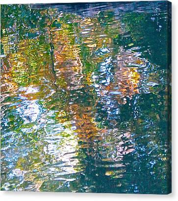 Mud Creek Reflection Canvas Print