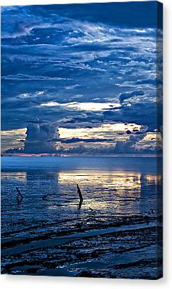 Mud Flats Canvas Print by Sarita Rampersad