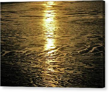 Canvas Print featuring the photograph Muddy Reflection by Jeremy Rhoades
