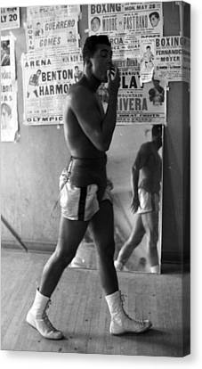 Muhammad Ali Walking In Gym Canvas Print by Retro Images Archive