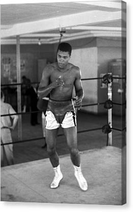 Islam Canvas Print - Muhammad Ali Warming Up by Retro Images Archive