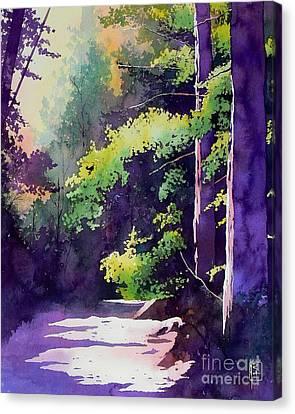 Muir Woods Canvas Print by Robert Hooper