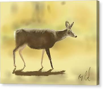 Mule Deer - Sketched On An Ipad Canvas Print