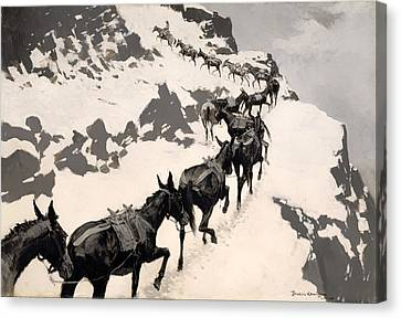 Mule Pack Canvas Print