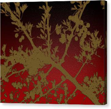 Mullberry Bush Canvas Print