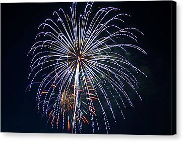 4th Of July Fireworks 12 Canvas Print by Howard Tenke