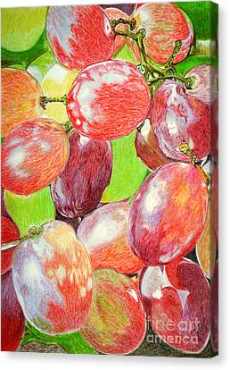 Multi Coloured Grapes Canvas Print by Yvonne Johnstone