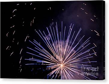 Multicolor Explosion Canvas Print by Suzanne Luft