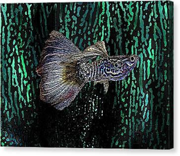 Multicolored Tropical Fish In Digital Art Canvas Print by Mario Perez