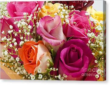 Multiple Roses Arrangement Canvas Print