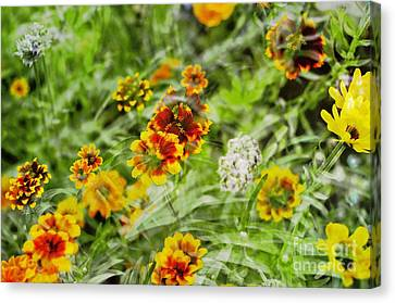 Canvas Print featuring the photograph Multiplicity by Maria Janicki