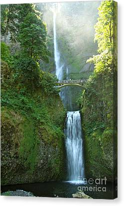 Multnomah Falls Canvas Print by Christiane Schulze Art And Photography