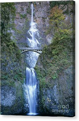 Multnomah Falls Columbia River Gorge Canvas Print by Dave Welling