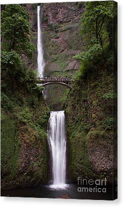 Multnomah Falls Canvas Print by Suzanne Luft