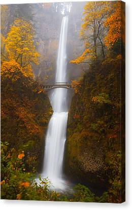 Multnomah Morning Canvas Print by Darren  White