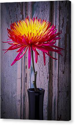Mum Against Old Wall Canvas Print