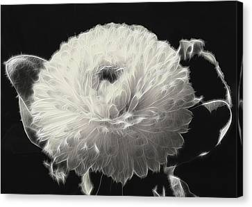 Mumsy Canvas Print by Wendy J St Christopher