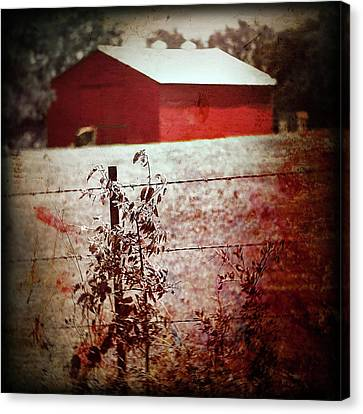 Murder In The Red Barn Canvas Print by Trish Mistric