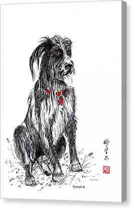 Murphy Canvas Print by Bill Searle
