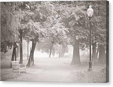 Museum Park Fog Canvas Print by Trish Tritz