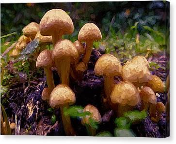Mushroom Hill Canvas Print by John K Woodruff