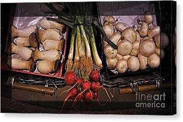 Morel Canvas Print - Mushrooms And Radishes Framed by Mary Machare