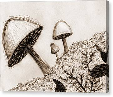 Mushrooms In Sepia Canvas Print by Jennifer Atherton