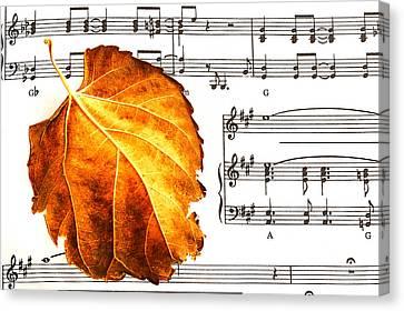 Music In Autumn Canvas Print by Marwan Khoury