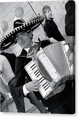 Music-mariachi Accordionist Canvas Print
