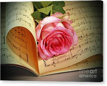 Musical Rose Canvas Print by Inspired Nature Photography Fine Art Photography