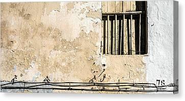 Musical Wall   Canvas Print