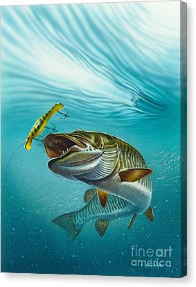 Muskie Troll Canvas Print by Jon Q Wright