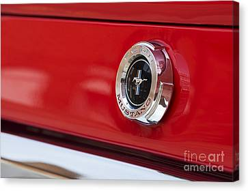 Mustang Abstract Canvas Print by Tim Gainey