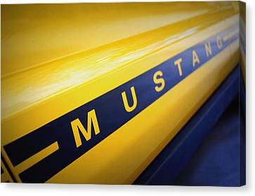 Mustang Canvas Print by Cricket Hackmann