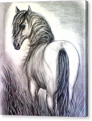 Mustang Canvas Print by J L Zarek