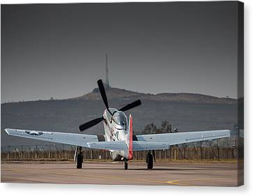 Mustang Power Canvas Print by Paul Job