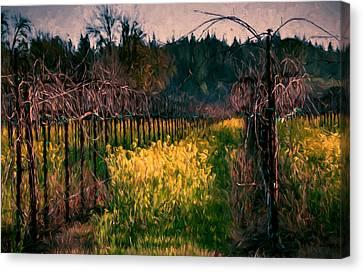 Mustard Flowers With Vines Canvas Print by John K Woodruff