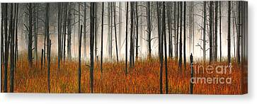 Canvas Print featuring the photograph Mute Dog Forest Pano by Clare VanderVeen