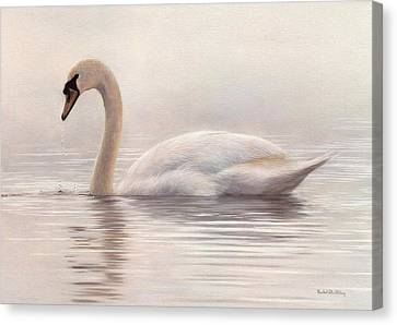 Mute Swan Painting Canvas Print by Rachel Stribbling