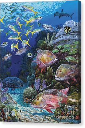 Mutton Reef Re002 Canvas Print by Carey Chen
