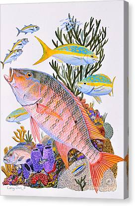 Whale Canvas Print - Mutton Snapper Reef by Carey Chen