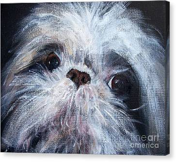 Mutual Admiration Canvas Print by Mary Lynne Powers