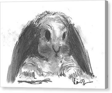 Canvas Print featuring the drawing My Baby Bunny by Laurie Lundquist