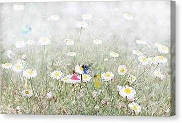 My Fairies Canvas Print