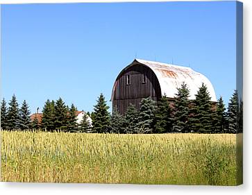 My Favorite Barn Canvas Print by Sheryl Burns